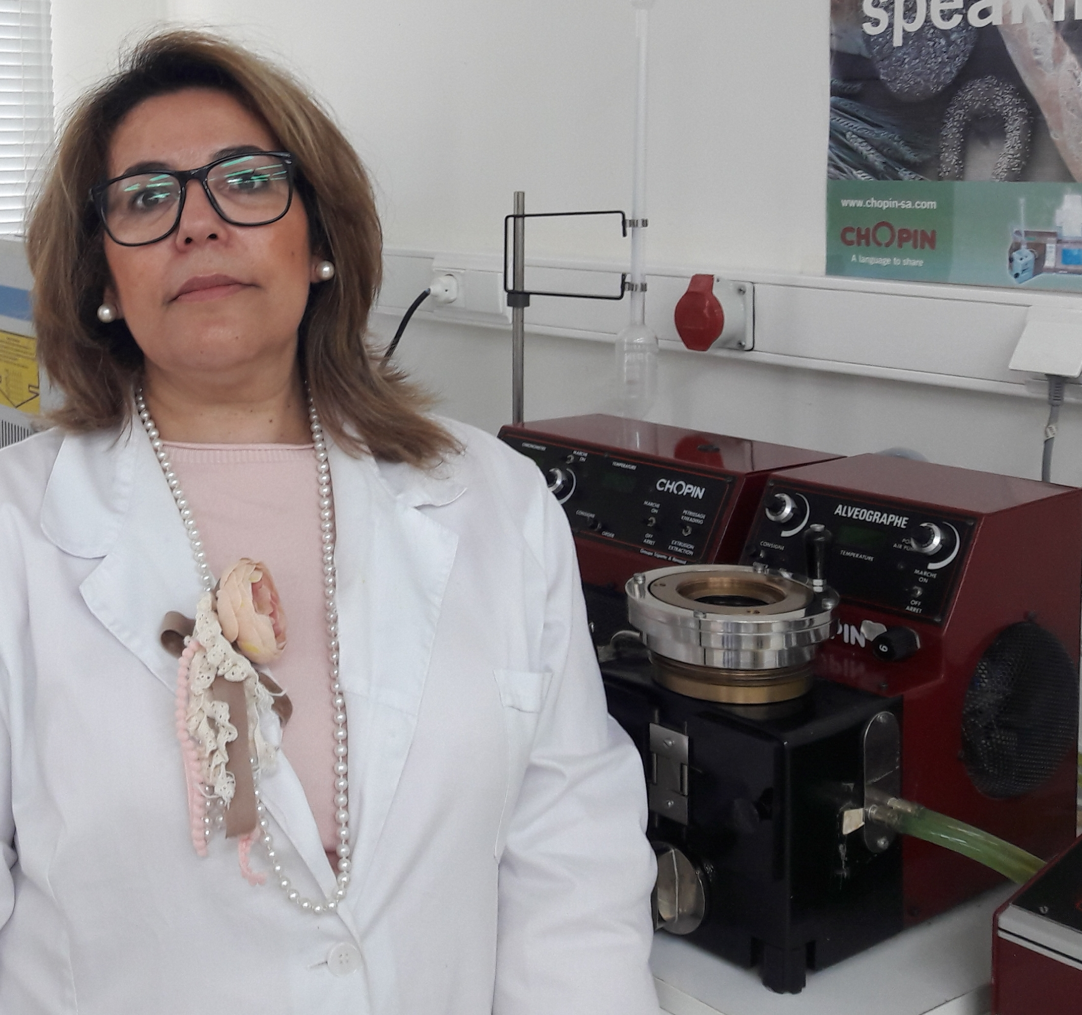 Elisabete Rosa